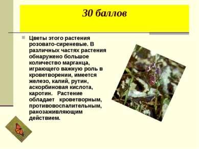 30 баллов Цветы этого растения розовато-сиреневые. В различных частях растени...