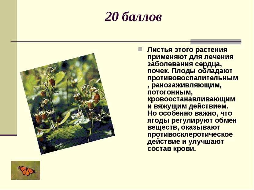 20 баллов Листья этого растения применяют для лечения заболевания сердца, поч...