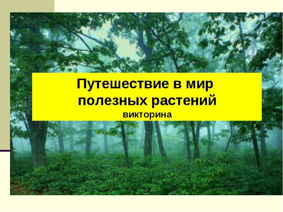 Путешествие в мир полезных растений викторина