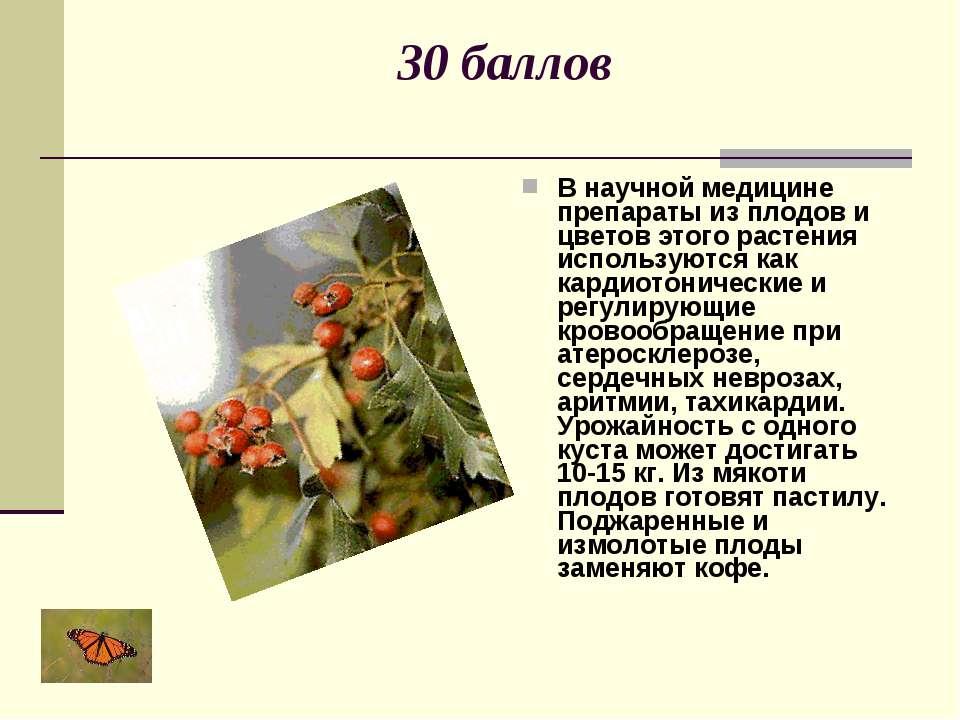 30 баллов В научной медицине препараты из плодов и цветов этого растения испо...