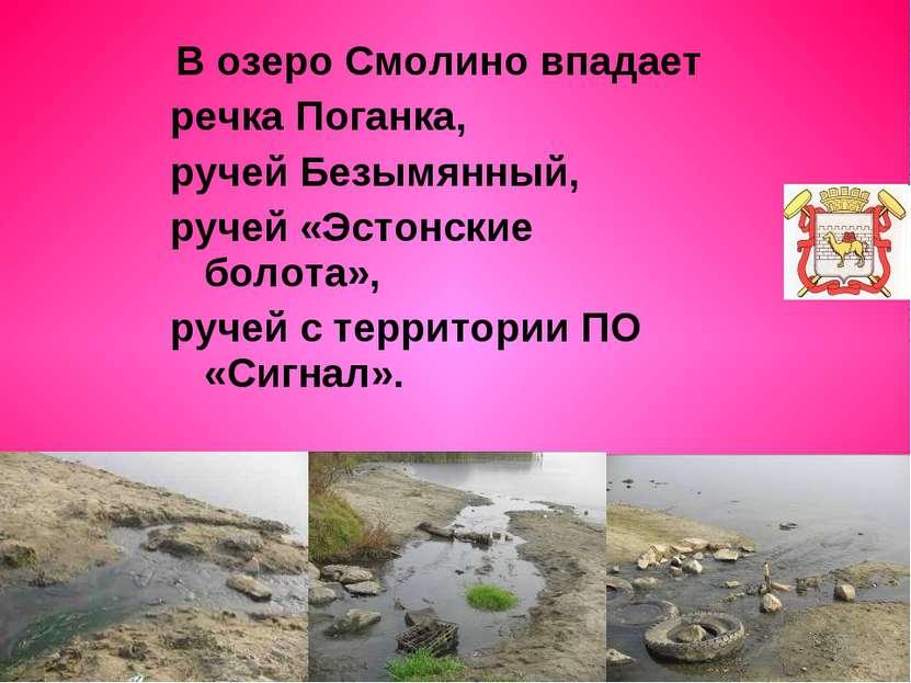В озеро Смолино впадает речка Поганка, ручей Безымянный, ручей «Эстонские бол...