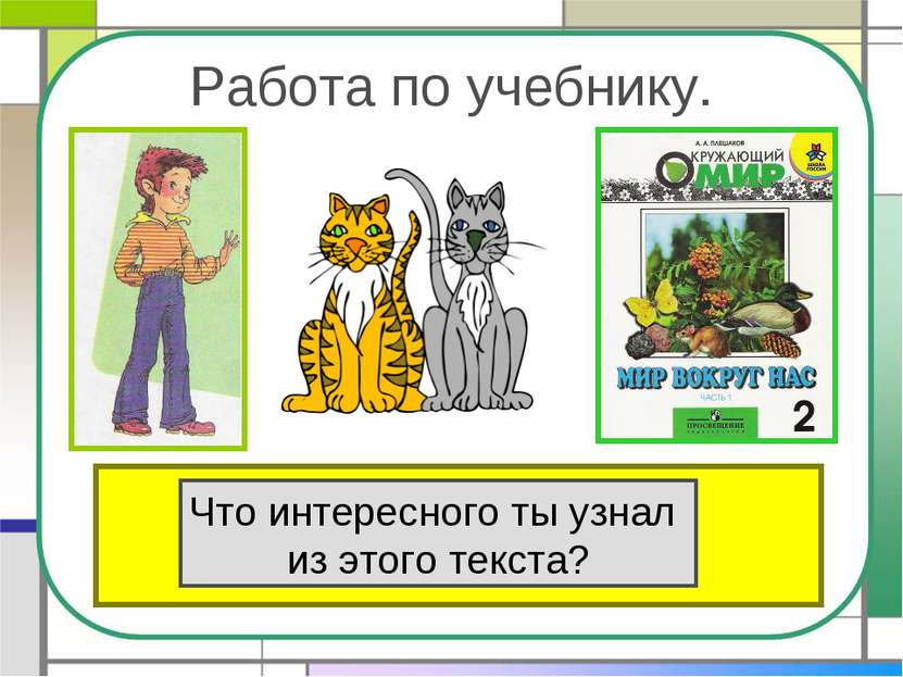 Работа по учебнику. Прочитай текст «Кошки» в учебнике на стр.80. Что интересн...