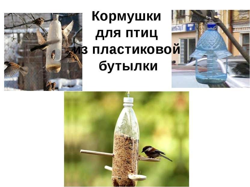 Кормушки для птиц из пластиковой бутылки