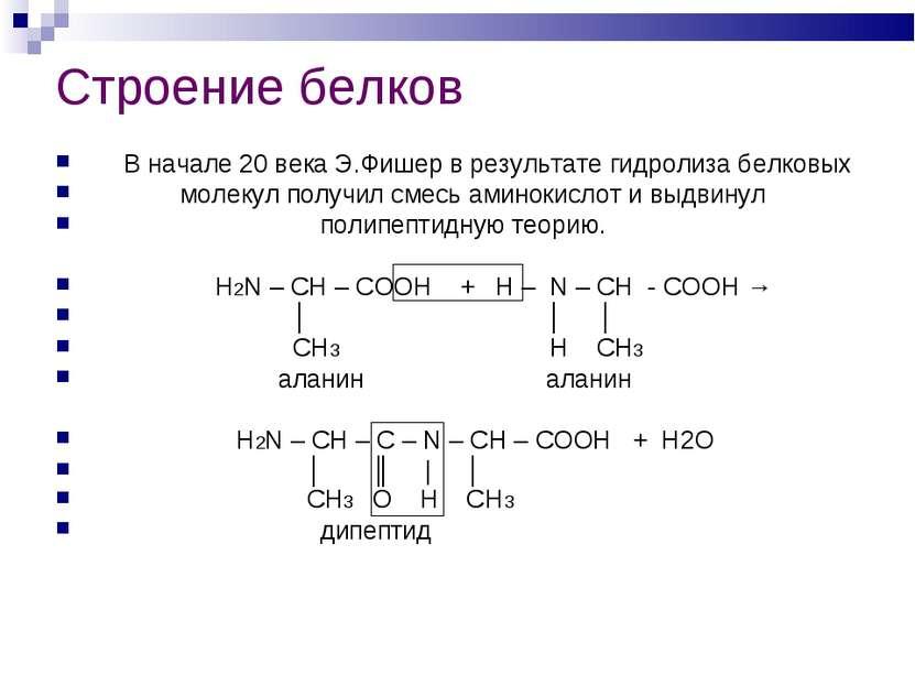 Строение белков В начале 20 века Э.Фишер в результате гидролиза белковых моле...