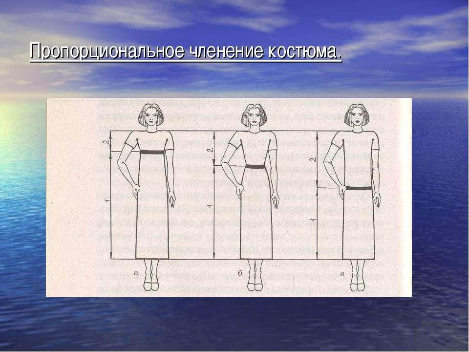 Пропорциональное членение костюма.
