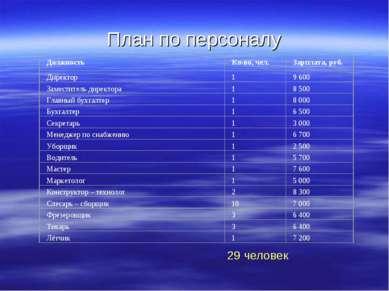 План по персоналу 29 человек