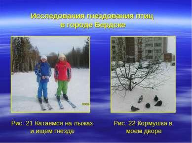 Рис. 21 Катаемся на лыжах и ищем гнезда Исследования гнездования птиц в город...