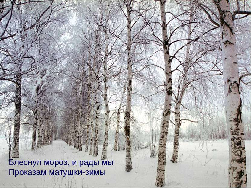 Блеснул мороз, и рады мы Проказам матушки-зимы