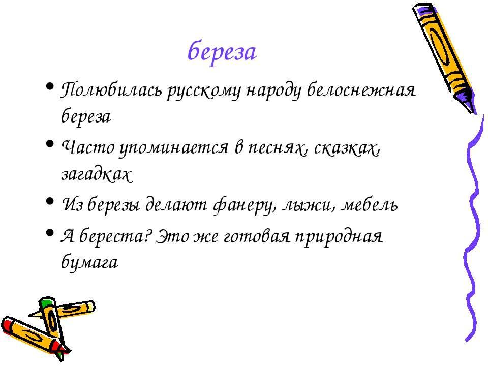 береза Полюбилась русскому народу белоснежная береза Часто упоминается в песн...