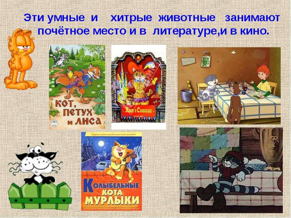 Эти умные и хитрые животные занимают почётное место и в литературе. Эти умные...