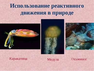 Использование реактивного движения в природе Каракатица Медуза Осьминог
