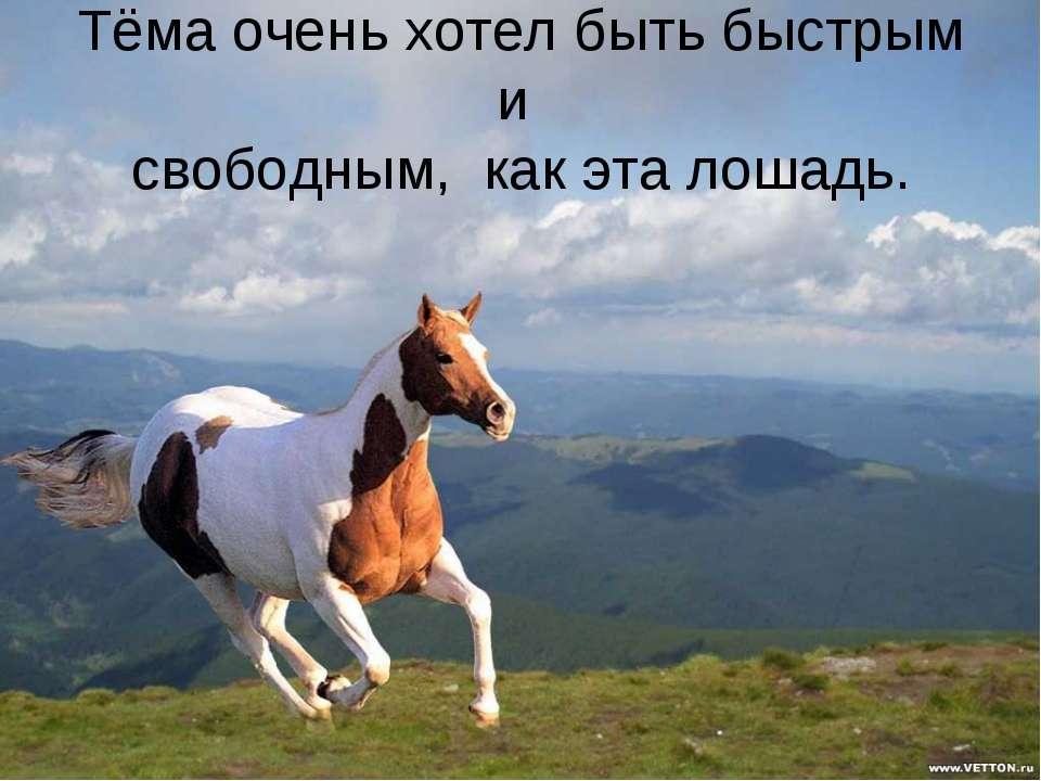 Тёма очень хотел быть быстрым и свободным, как эта лошадь.