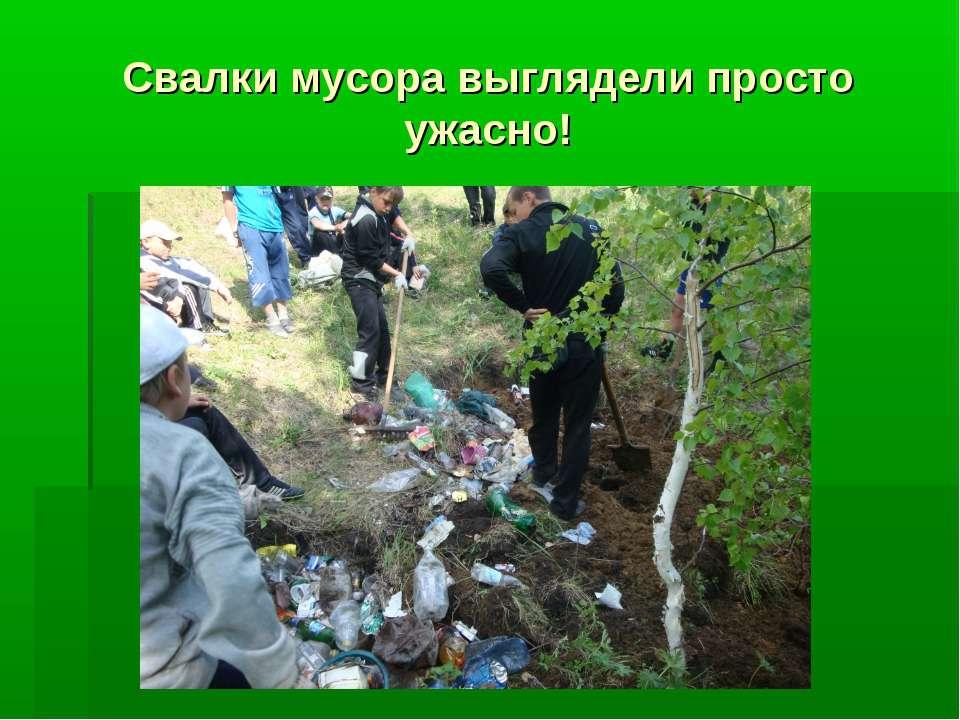 Свалки мусора выглядели просто ужасно!