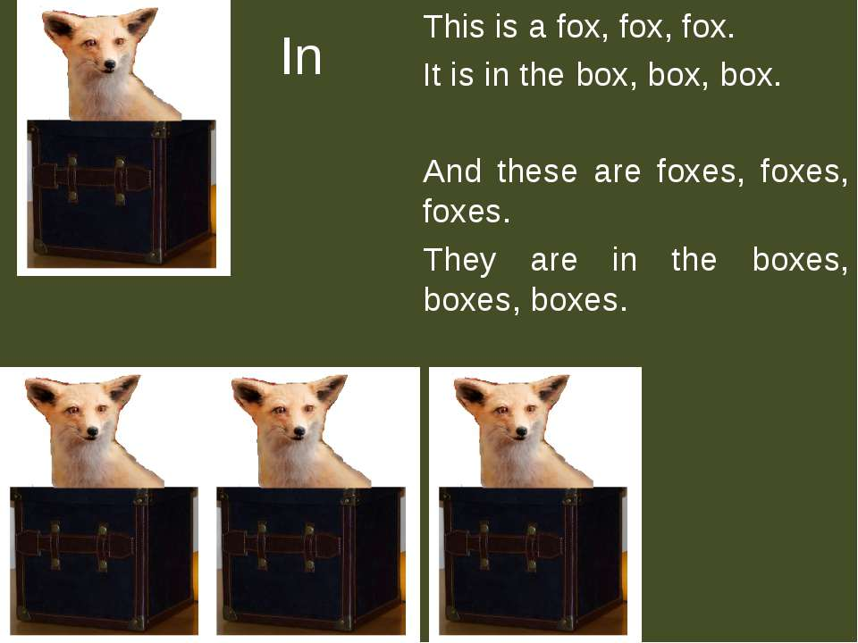 In This is a fox, fox, fox. It is in the box, box, box. And these are foxes, ...