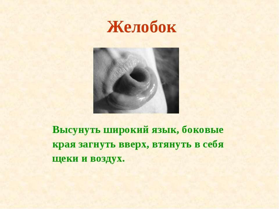 Желобок Высунуть широкий язык, боковые края загнуть вверх, втянуть в себя щек...