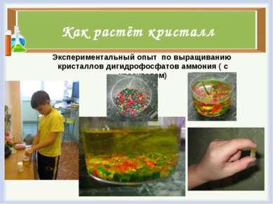 Как растёт кристалл Экспериментальный опыт по выращиванию кристаллов дигидроф...
