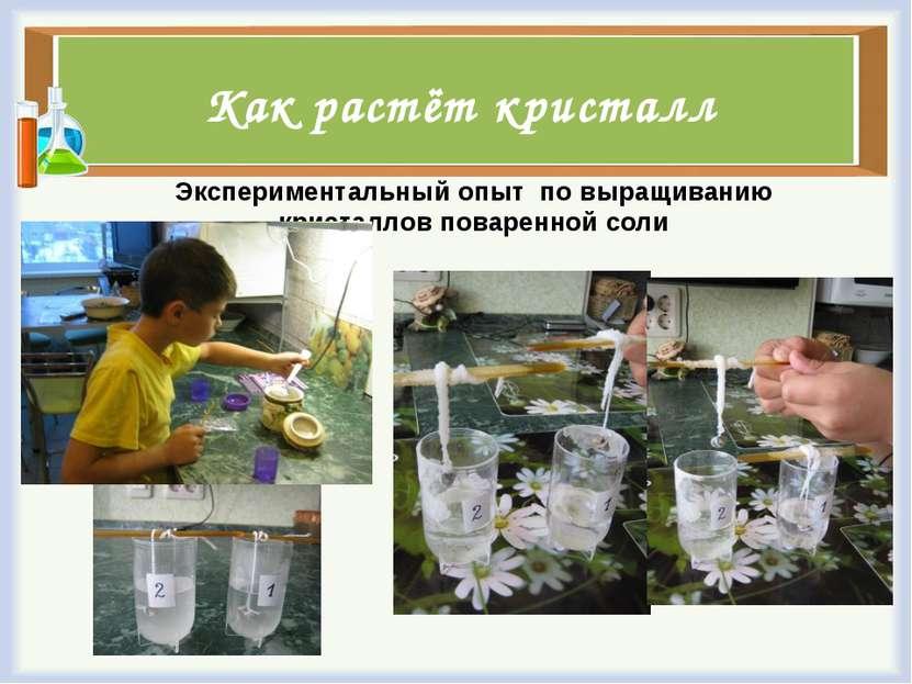 Как растёт кристалл Экспериментальный опыт по выращиванию кристаллов поваренн...