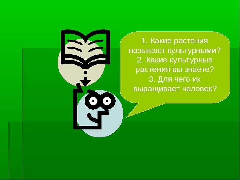 1. Какие растения называют культурными? 2. Какие культурные растения вы знает...