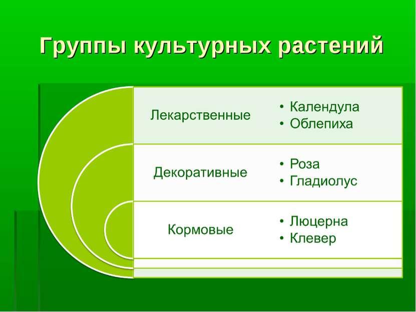 Группы культурных растений
