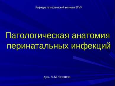 Патологическая анатомия перинатальных инфекций доц. А.М.Неровня Кафедра патол...