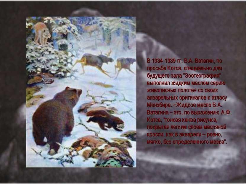 В 1934-1939 гг. В.А. Ватагин, по просьбе Котса, специально для будущего зала ...