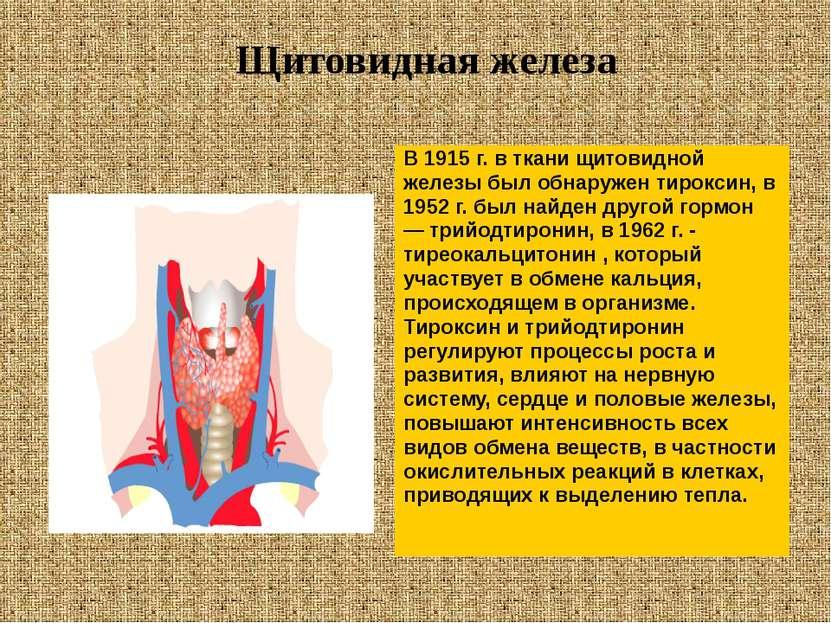В 1915 г. в ткани щитовидной железы был обнаружен тироксин, в 1952 г. был най...