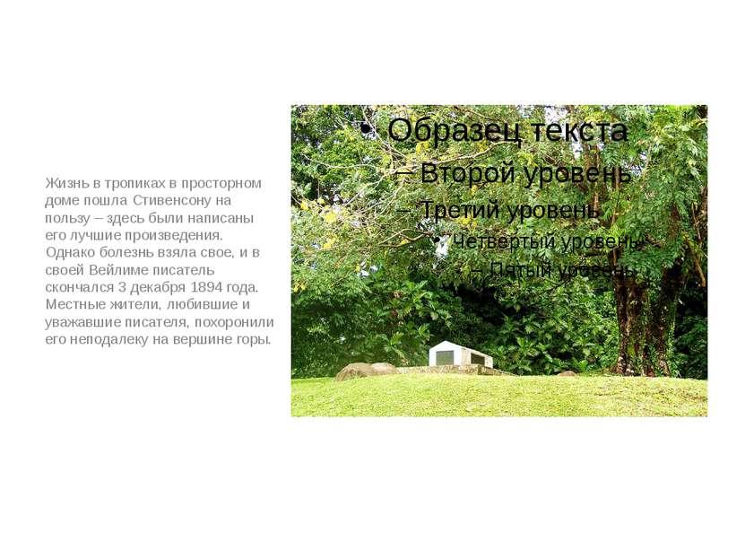 Жизнь в тропиках в просторном доме пошла Стивенсону на пользу – здесь были на...