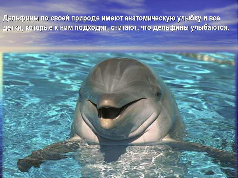 Дельфины по своей природе имеют анатомическую улыбку и все детки, которые к н...