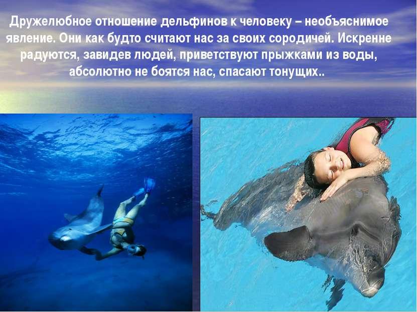 Дружелюбное отношение дельфинов к человеку – необъяснимое явление. Они как бу...