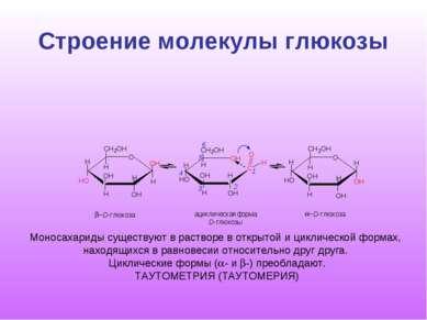 Строение молекулы глюкозы O H C O H H O O H O H H H H H 2 1 3 4 6 5 C H 2 O H...