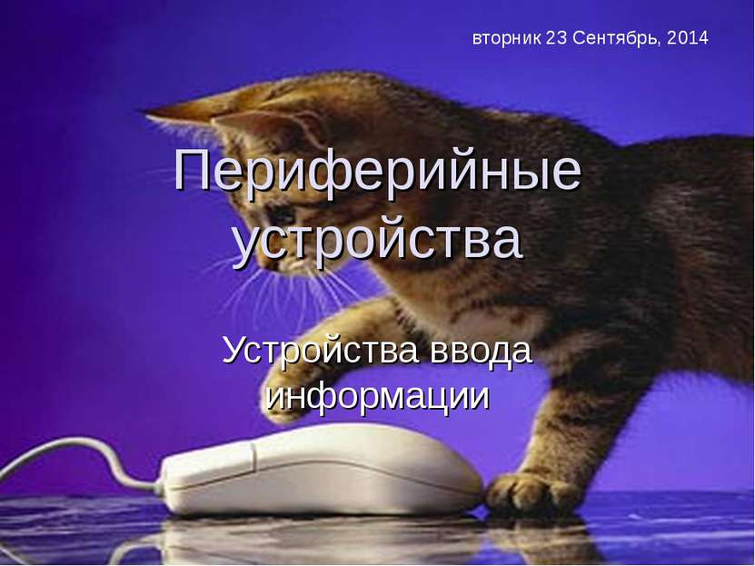 Периферийные устройства Устройства ввода информации * Усольцева Э.М-А. препод...