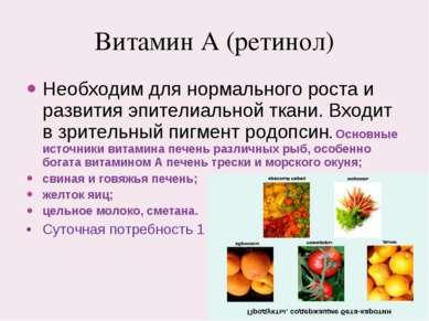 Витамин А (ретинол) Необходим для нормального роста и развития эпителиальной ...