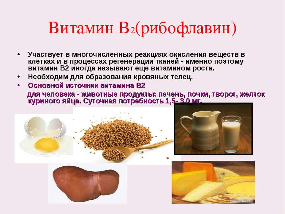 Витамин В2(рибофлавин) Участвует в многочисленных реакциях окисления веществ ...