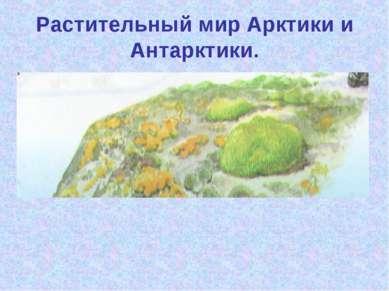 Растительный мир Арктики и Антарктики.