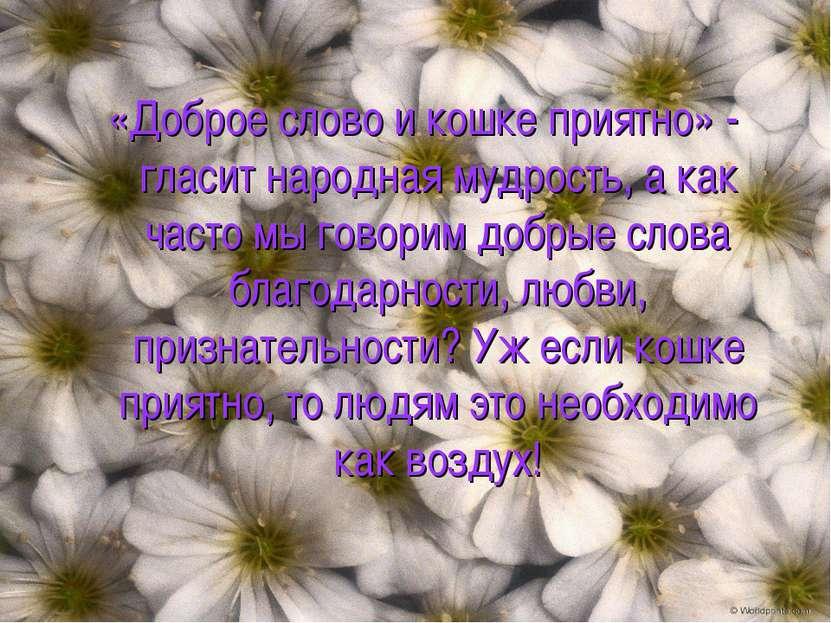 «Доброе слово и кошке приятно» - гласит народная мудрость, а как часто мы гов...