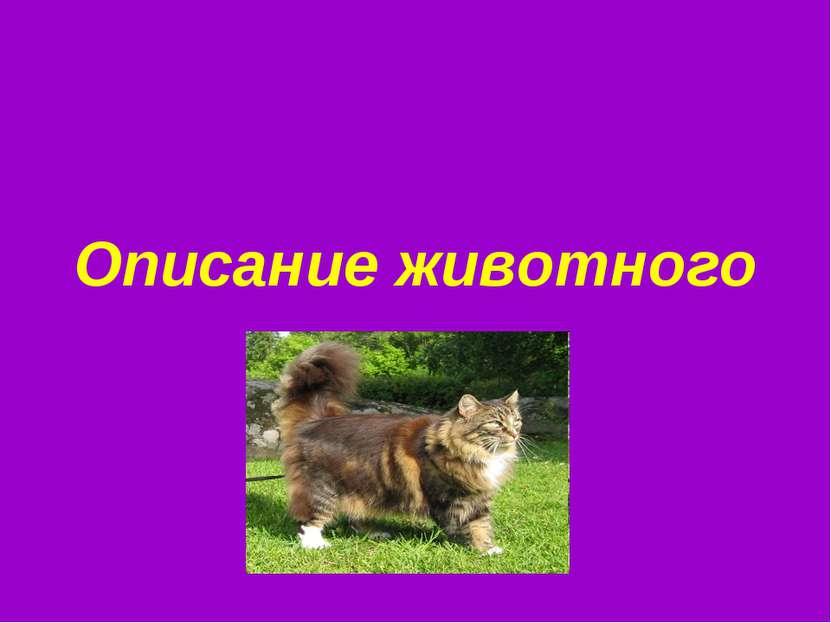 Описание животного