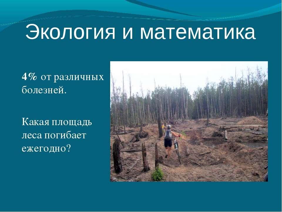 4% от различных болезней. Какая площадь леса погибает ежегодно? Экология и ма...