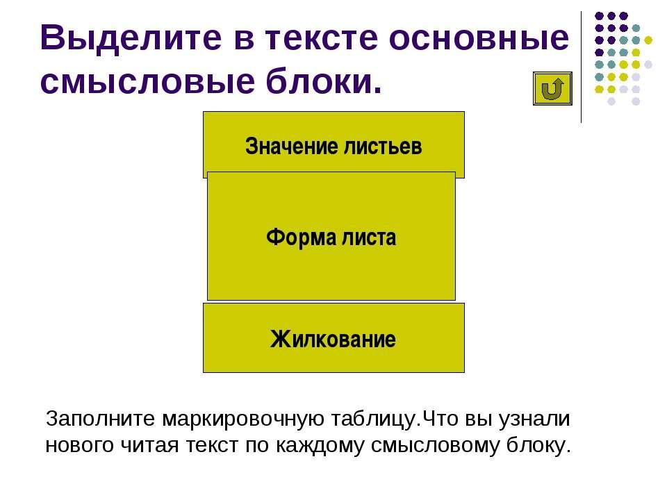 Выделите в тексте основные смысловые блоки. Значение листьев Жилкование Форма...