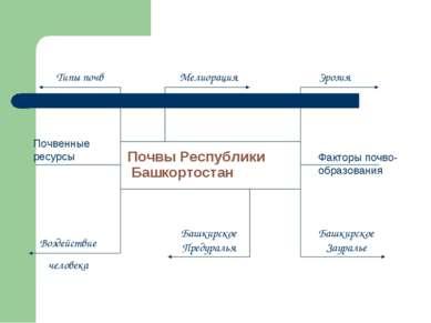 Почвы Республики Башкортостан Башкирское Предуралья Башкирское Зауралье Типы ...