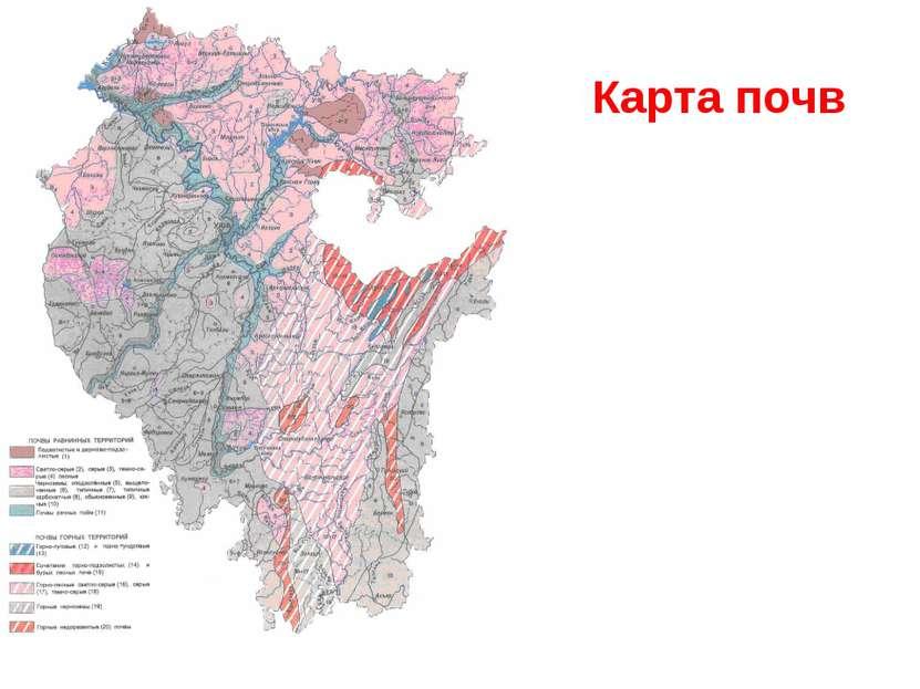 Карта почв