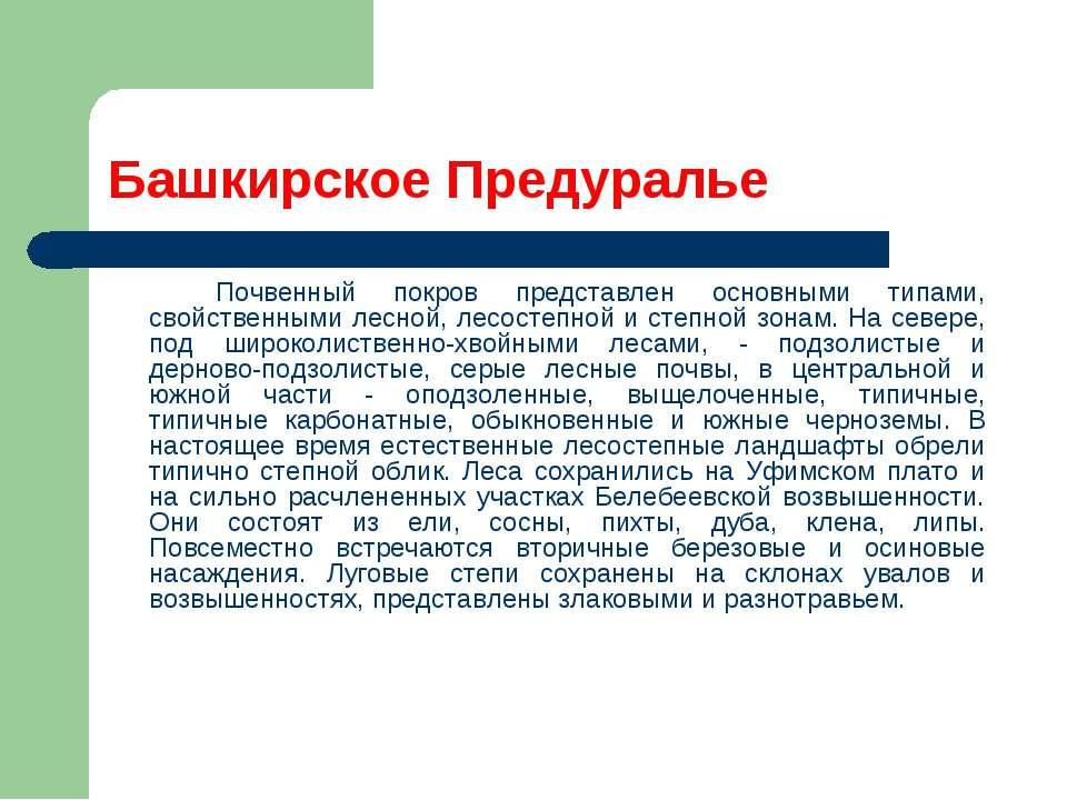Башкирское Предуралье Почвенный покров представлен основными типами, свойстве...