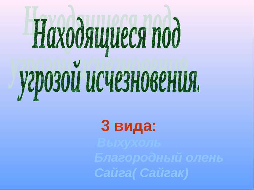 3 вида: Выхухоль Благородный олень Сайга( Сайгак)
