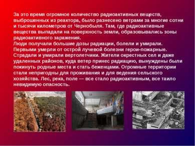 За это время огромное количество радиоактивных веществ, выброшенных из реакто...