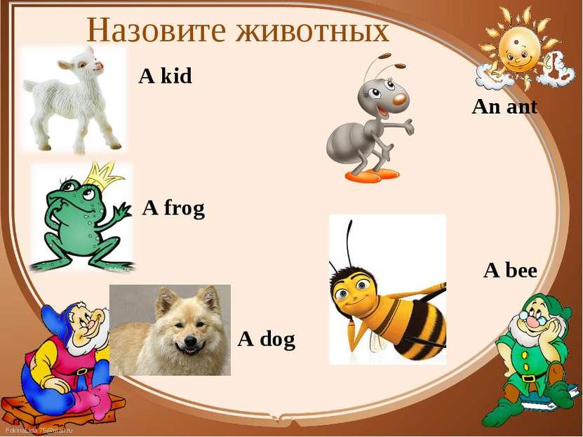 A kid A kid A frog A dog