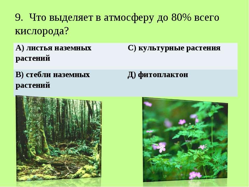 9. Что выделяет в атмосферу до 80% всего кислорода? А) листья наземных раст...