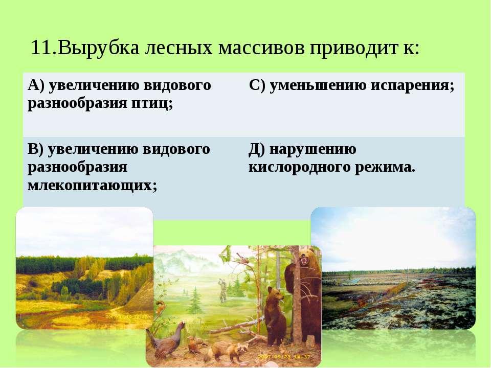11.Вырубка лесных массивов приводит к: А) увеличению видового разнообразия пт...