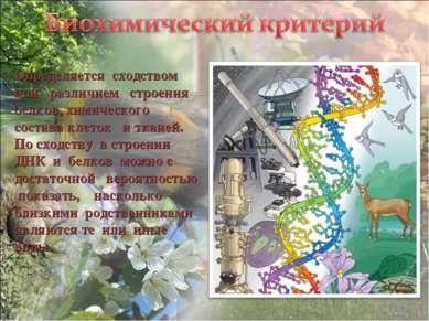 Определяется сходством или различием строения белков, химического состава кле...