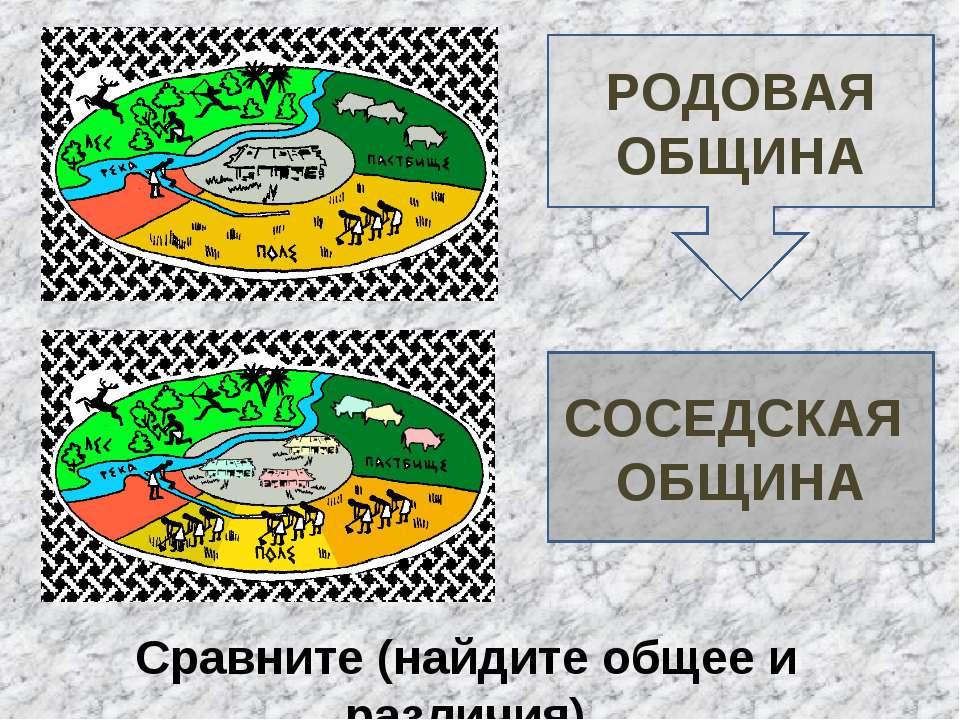РОДОВАЯ ОБЩИНА СОСЕДСКАЯ ОБЩИНА Сравните (найдите общее и различия)