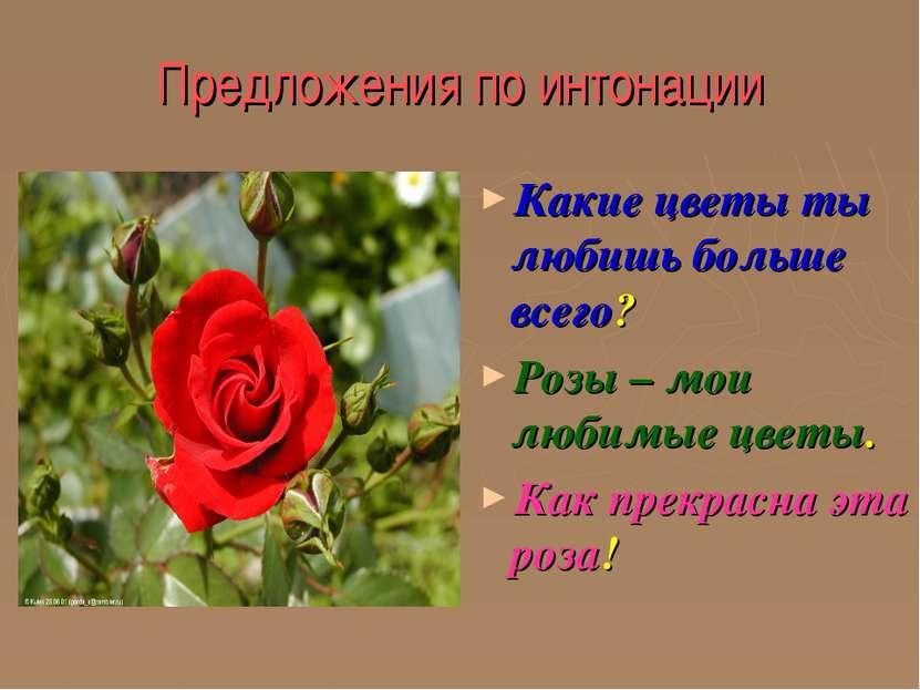 Предложения по интонации Какие цветы ты любишь больше всего? Розы – мои любим...