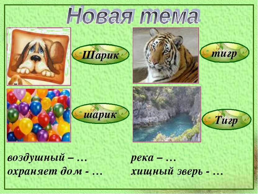 Шарик шарик тигр Тигр воздушный – … охраняет дом - … река – … хищный зверь - …